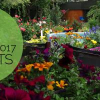Summer Garden Award Winners 2017