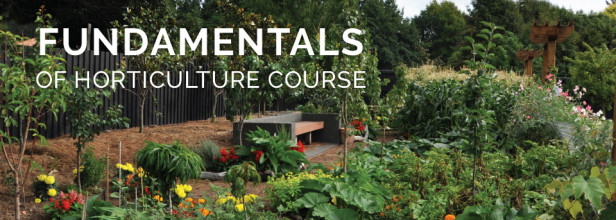 Fundamentals of Horticulture Course 2019