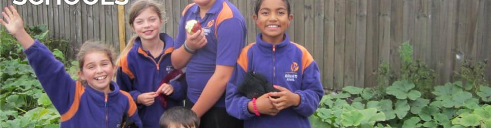 Orchards in Schools – Progress Report