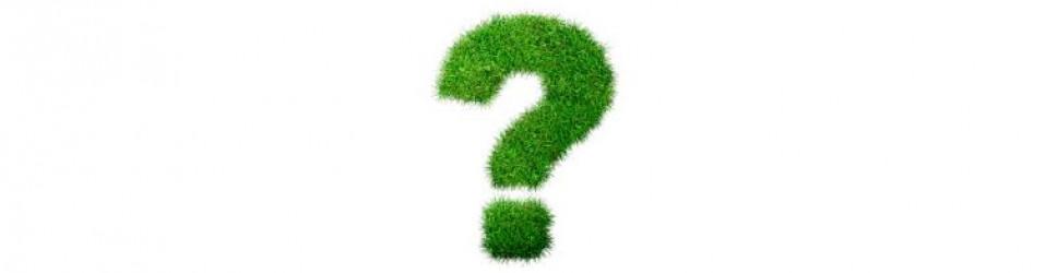 September 2016 Quiz Time Q & A