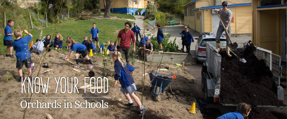 Orchards in Schools