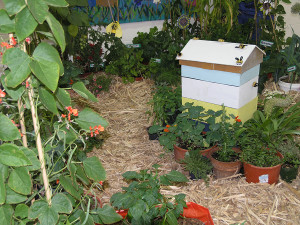 Bishopdale School The Bishopdale School Bee Garden