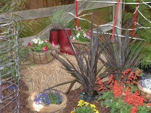 Oderings School Gardens Show