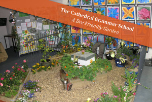 The Cathedral Grammar SchoolA Bee Friendly Garden : SILVER AWARD