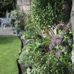 david-garden-web