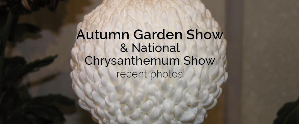 Autumn Garden Show Photos