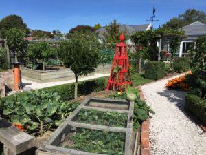 Residential Garden. Murray Dunbar, 38 Colombo Street.