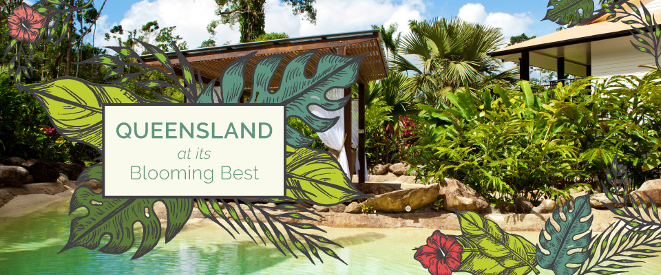 Queensland at its Blooming Best – 11 Day Tour