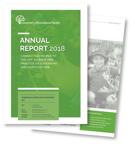 CHS 2018 Annual Report