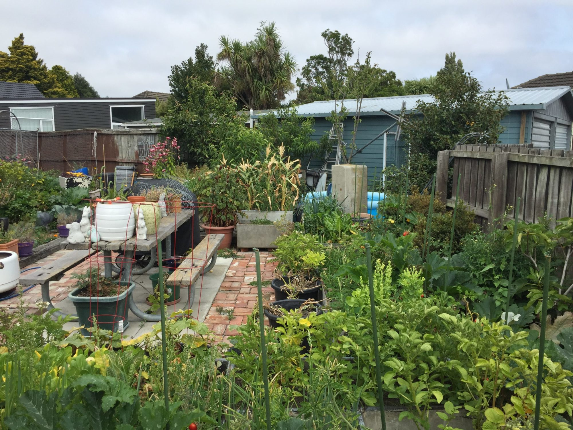 Edible and Sustainable Garden Awards 2020 Results